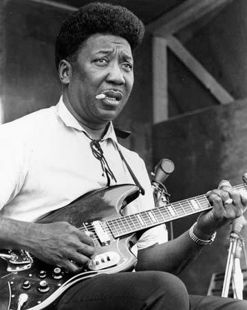 muddy-waters